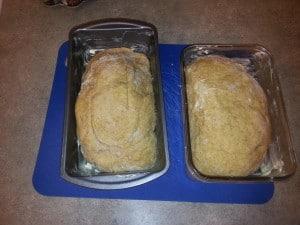 Sugar Free Bread - Part Eight