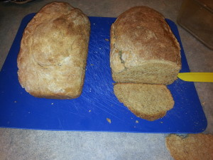 Sugar Free Bread - Part Nine