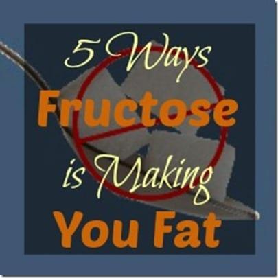 5 Ways Fructose Makes You Fat
