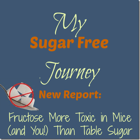 New Report Fructose More Toxic In Mice and You Than Table Sugar