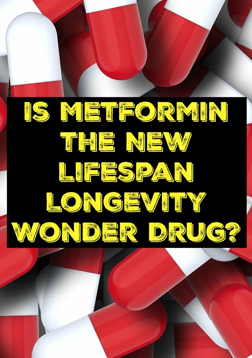 Is Metformin the New Lifespan Longevity Wonder Drug?