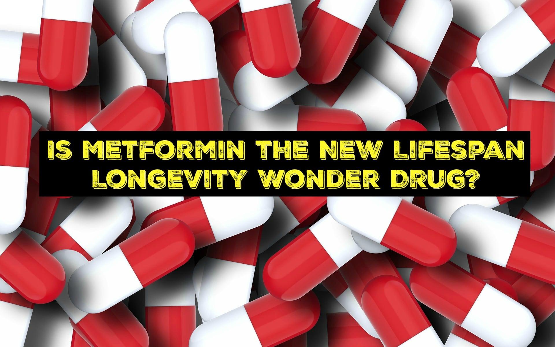 Is Metformin the New Lifespan Longevity Wonder Drug?
