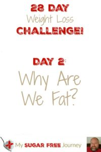 Day 2: Why Are We Fat?