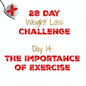 Day 14: The Importance of Exercise