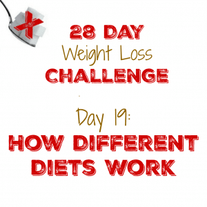 Day 19: How Different Diets Work