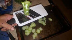Broccoli Chips Recipe