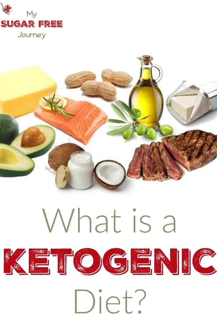 What is a Ketogenic Diet? | My Sugar Free Journey