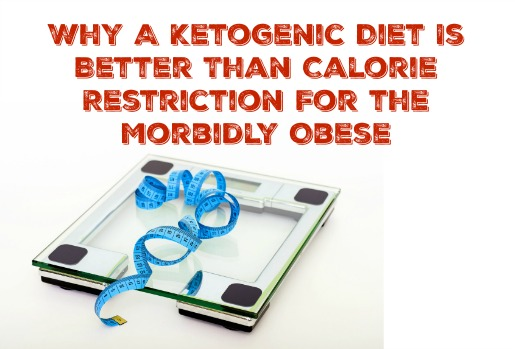 How fast can i lose weight on low carb diet image 3