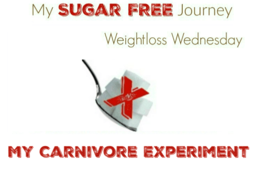 Weight Loss Wednesday My Carnivore Experiment